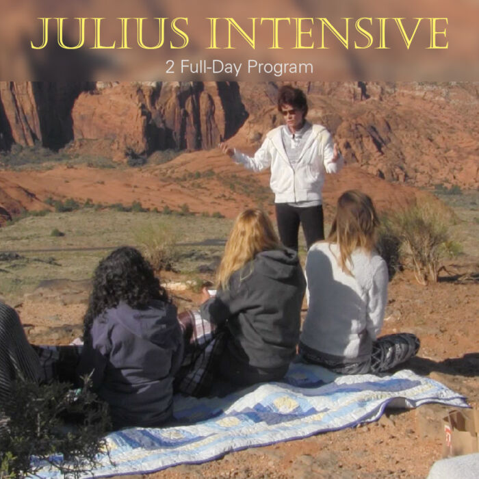 Julius Intensive | Expand with Julius and Xpnsion Network