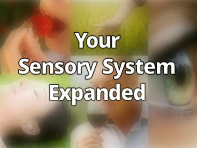 Your Sensory System Expanded | Expand with Julius and Xpnsion Network
