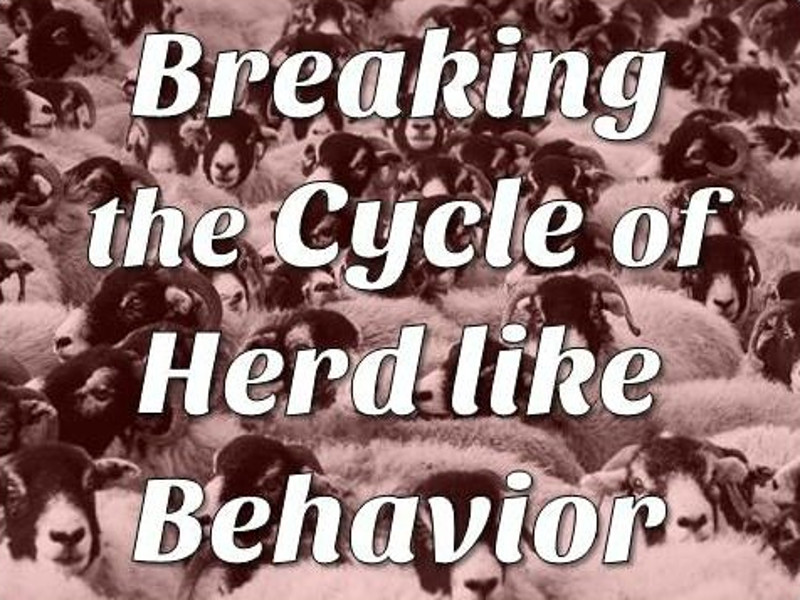 Breaking The Cycle Of Herd Like Behavior | Expand with Julius and Xpnsion Network