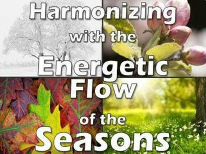 Harmonizing With The Energetic Flow Of The Seasons | Expand with Julius and Xpnsion Network