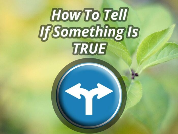How To Tell If Something Is True | Expand with Julius and Xpnsion Network